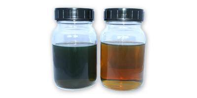 Campioni di olio con particelle